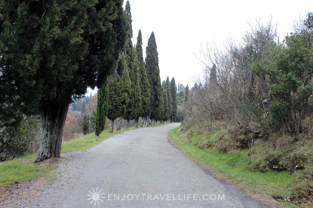Path to Bramasole | Cortona | Italy