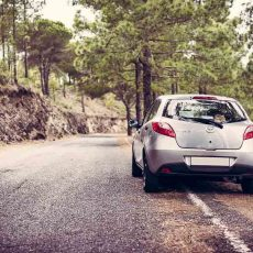 Planning a Road Trip: A Beginner's Guide