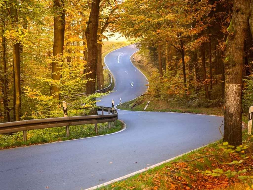 Winding road through fall foliage: [Article: advantages and disadvantages of travelling by car]