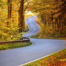 The Advantages and Disadvantages of Travelling by Car
