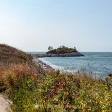 A Delightful (Easy) Seaside Hike to The Knob Falmouth MA