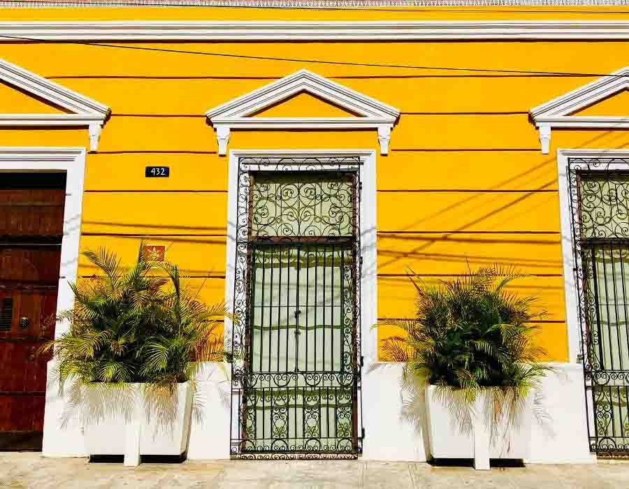 A bright yellow house with ornate wrought-iron doors and fern plans in Merida, Mexico.
