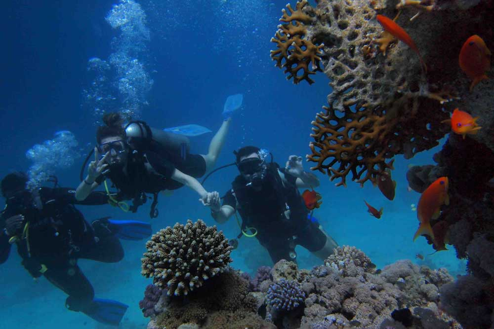 Long stay vacations: Barbados underwater scuba diving scene with three divers, coral, and red fish