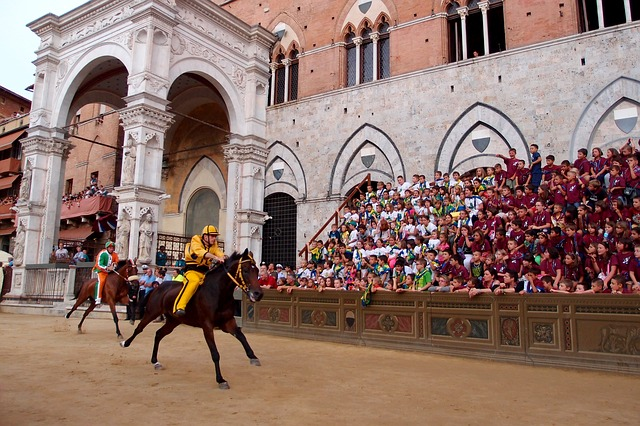 A horse and jockey pass by spectators at the Paleo.