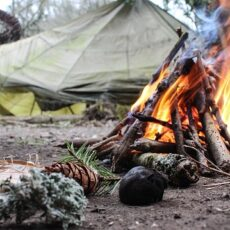 Easy Beginner Camping Tips: Be A Happy Camper The First Time