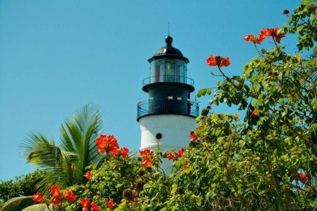key west lighthouse and red flowers