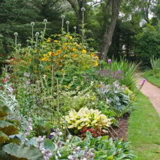 How to Clean Out A Flower Bed and Revive A Neglected Garden